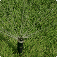 book a sprinkler blowout service to winterize your sprinkler system before the first deep freeze
